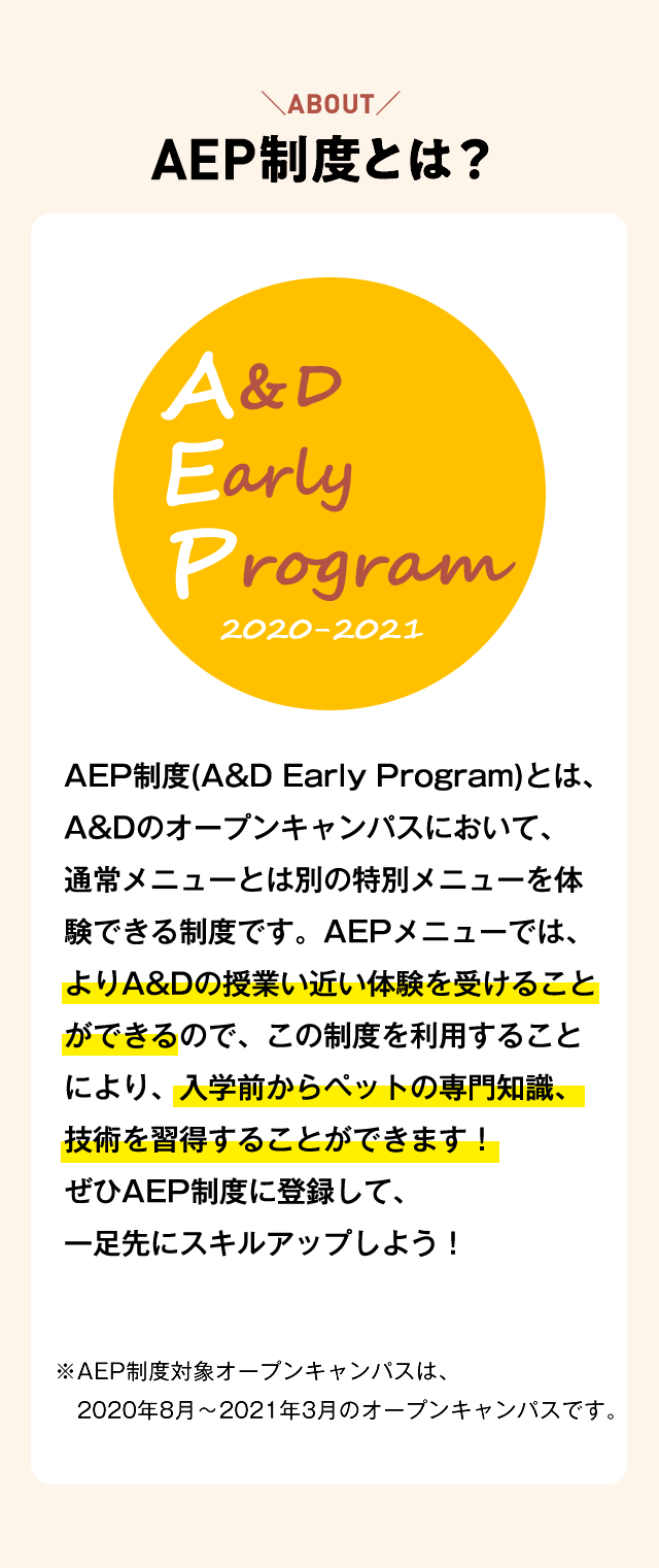 AEP制度とは?