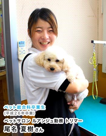 ペット総合科卒業生(平成26年卒業) ペットサロン ルアンジュ勤務 トリマー 尾名 夏樹さん