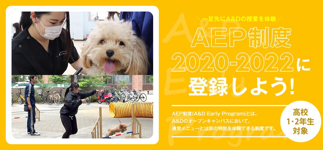AEP制度